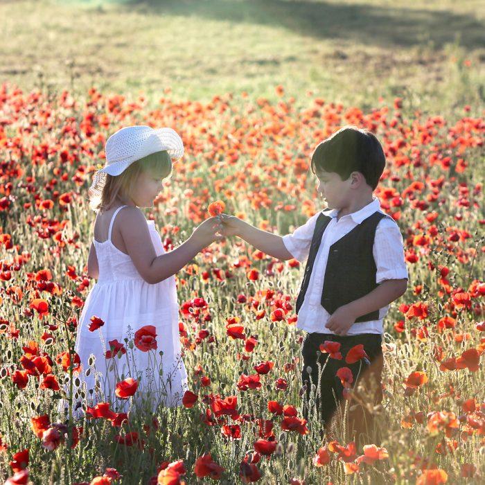 Poppy Photo shoot wildflower